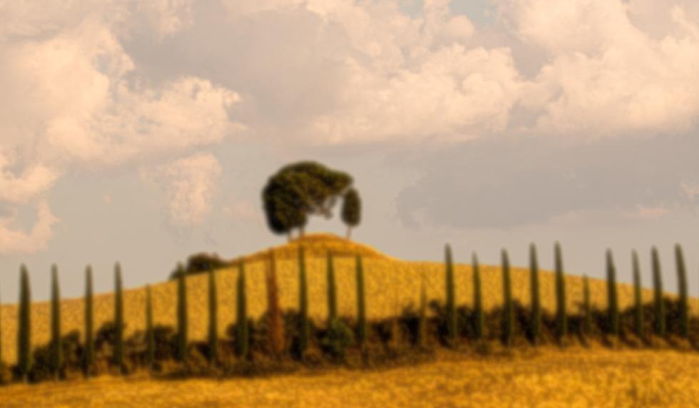 tuscan backdrop
